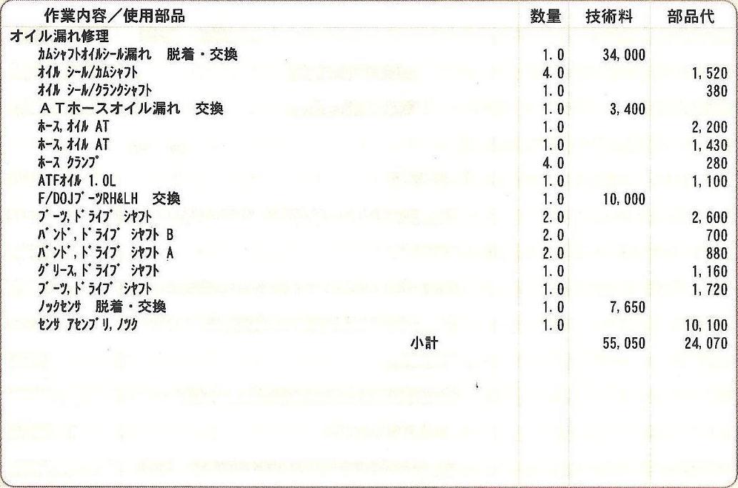 20100124_subaru_021